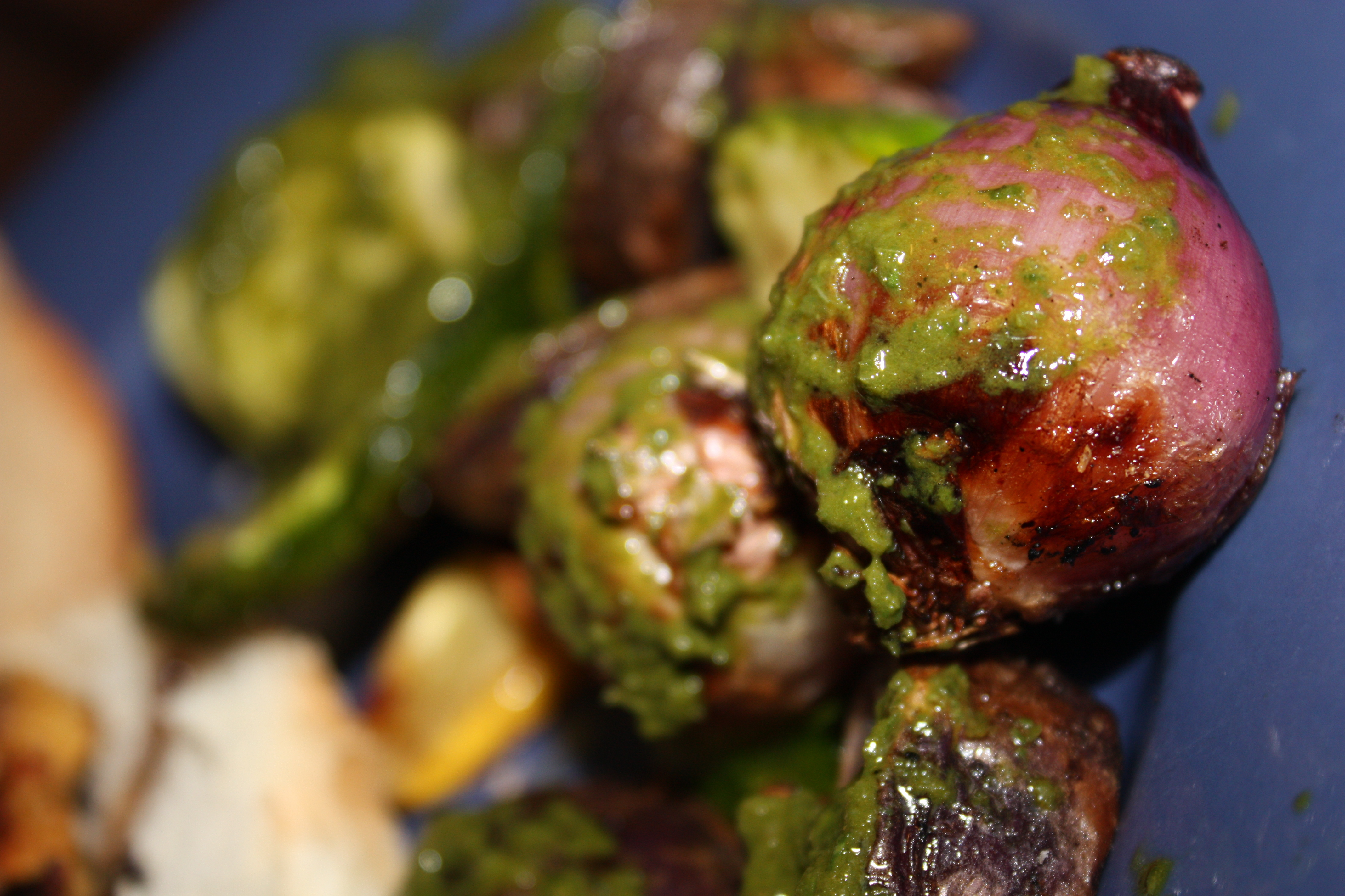 Vegetable mixed grill with basil vinaigrette | Gourmet Veggie Mama